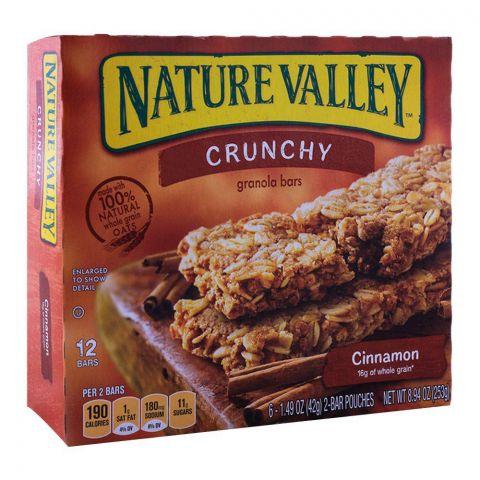 Nature Valley Cinnamon Crunchy Granola Bars 252g