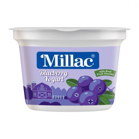 Millac Blueberry Fruit Yogurt, 100g