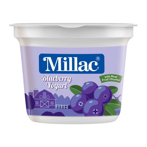Millac Blueberry Fruit Yogurt, 250g