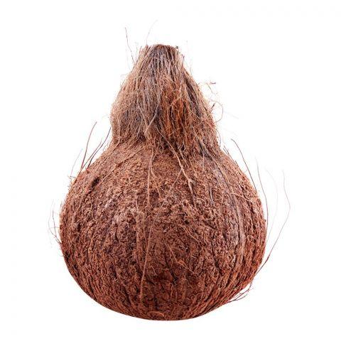 Coconut Local 1-Piece