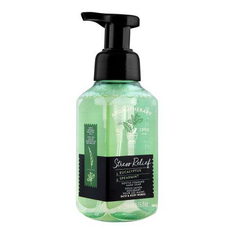 Bath & Body Works Aromatherapy Stress Relief Gentle Foaming Hand Soap, 259ml